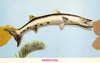 top009415 - Fish/Sea Mammals