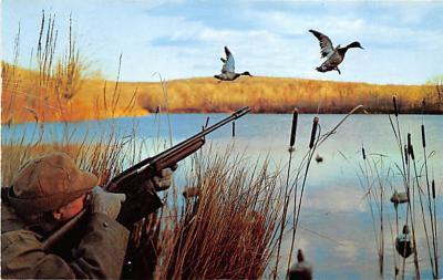 top009615 - Ducks/Geese