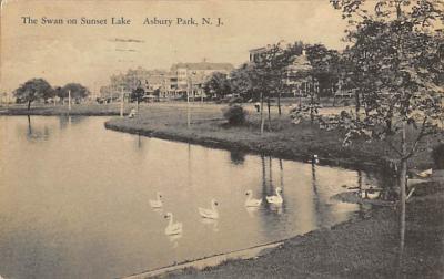 top010181 - Swans
