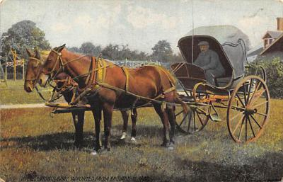 top010491 - Horse Drawn