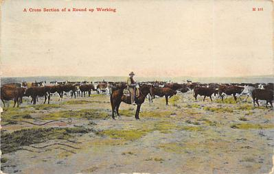 top010823 - Cowboys