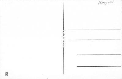 top012495 - Krampus  back