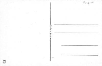 top012635 - Krampus  back