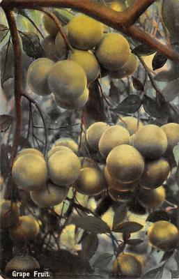 top014111 - Fruit Assorted
