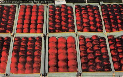 top014121 - Fruit Assorted