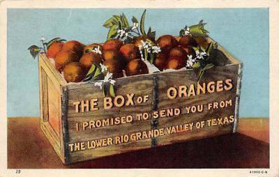 top014131 - Fruit Assorted