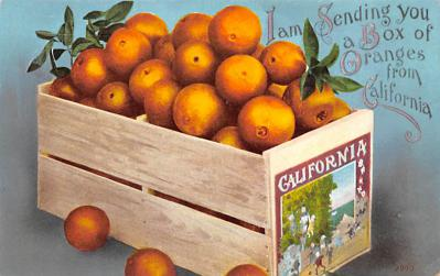 top014143 - Fruit Assorted