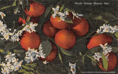 top014189 - Fruit Assorted