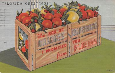 top014287 - Fruit Assorted