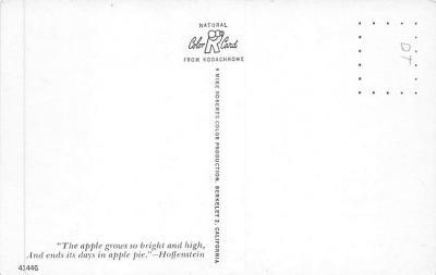 top014295 - Fruit Assorted  back