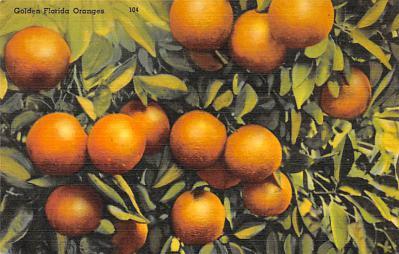 top014381 - Fruit Assorted