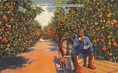 top014425 - Fruit Assorted
