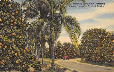 top014439 - Fruit Assorted