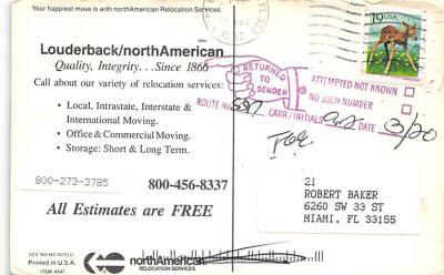 top025969 - Trucks / Buses /  Vans Post Card  back