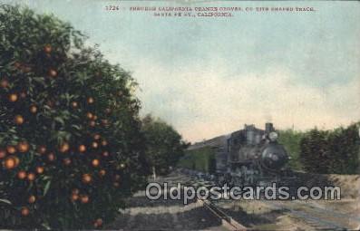 tra006315 - The Orange Groves,California, Usa Train Trains Locomotive, Steam Engine,  Postcard Postcards