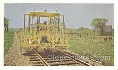 tra006678 - Multiple Tamper Smoothing Track, Green Bay, WI USA Train, Trains, Locomotive, Old Vintage Antique Postcard Post Card