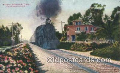 trn001187 - Flower Bordered Track, California, CA USA Trains, Railroads Postcard Post Card Old Vintage Antique
