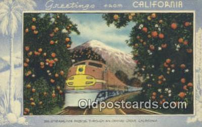 trn001216 - Streamliner Passing Through An Prange Groves, California, CA USA Trains, Railroads Postcard Post Card Old Vintage Antique