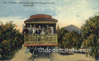 trn001219 - The Limited Passing Through The Orange Groves, California, CA USA Trains, Railroads Postcard Post Card Old Vintage Antique