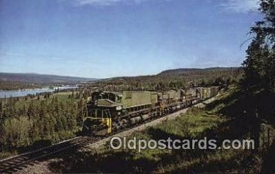 trn001311 - British Columbia Railway, Wide Cab, M636, Alexandria, British Columbia, BC  Trains, Railroads Postcard Post Card Old Vintage Antique