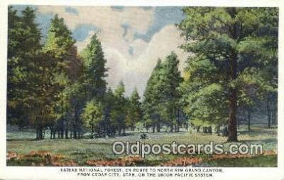 trn001396 - United Pacific System Kaibab National Forest, Cedar City, Utah, UT USA Trains, Railroads Postcard Post Card Old Vintage Antique
