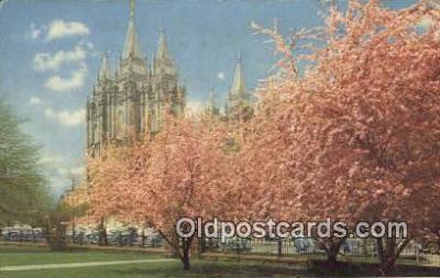 trn001482 - Mormon Temple, Union Pacific Railroad, Salt Lake City, Utah, UT USA Trains, Railroads Postcard Post Card Old Vintage Antique