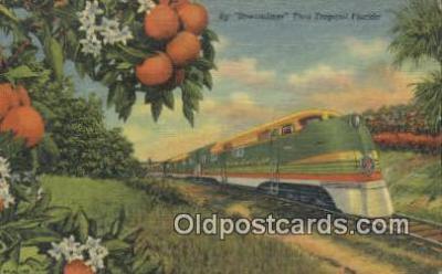 trn001495 - Streamliner, Florida, FL USA Trains, Railroads Postcard Post Card Old Vintage Antique