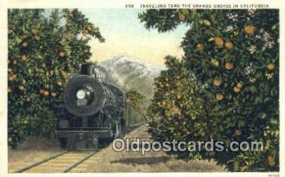 trn001555 - Orange Groves, California, CA USA Trains, Railroads Postcard Post Card Old Vintage Antique