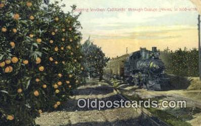 trn001653 - Orange Groves, Southern California, CA USA Trains, Railroads Postcard Post Card Old Vintage Antique