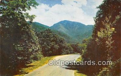 US Highway NO 441, Newfound Gap