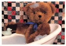 ted004123 - Teddy Bear Post Card