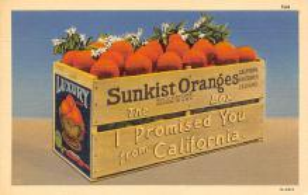top001951 - Advertising Post Card