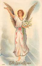 top002745 - Angels Post Card