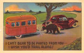 top002843 - Bear Post Card