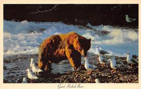top002851 - Bear Post Card