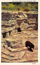 top002959 - Bear Post Card