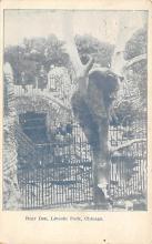 top003157 - Bear Post Card
