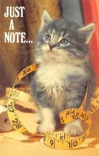 top003291 - Cat Post Card