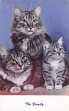 top003297 - Cat Post Card