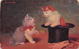 top003479 - Cat Post Card