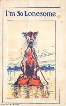 top003525 - Cat Post Card