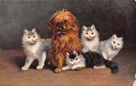 top003549 - Cat Post Card
