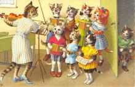 top003563 - Cat Post Card