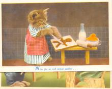 top003573 - Cat Post Card