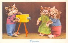 top003579 - Cat Post Card