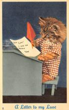 top003601 - Cat Post Card