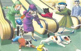 top003689 - Cat Post Card