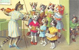 top003697 - Cat Post Card