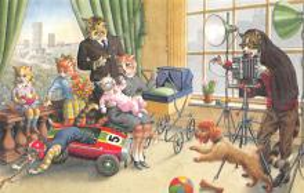 top003705 - Cat Post Card