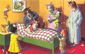 top003715 - Cat Post Card